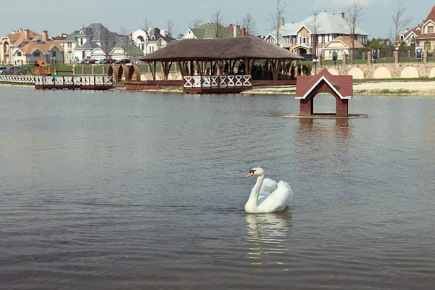 Коттеджный поселок Княжье озеро 36