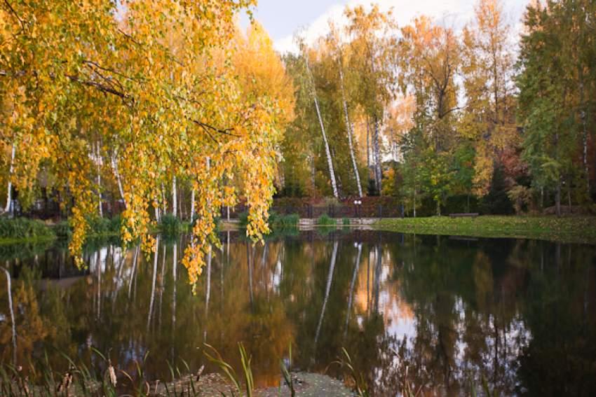 Коттеджный поселок Княжье озеро 37